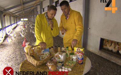 Eieren: Lekker en Gezond